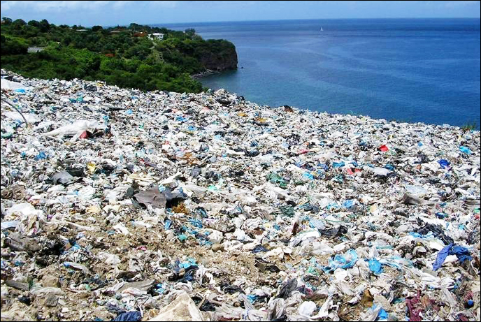 Hawaii Becomes the First State to Ban Distribution of Plastic Bags