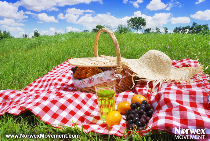 How to Make Your Next Picnic More Eco-Friendly