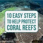 coral_reef_2
