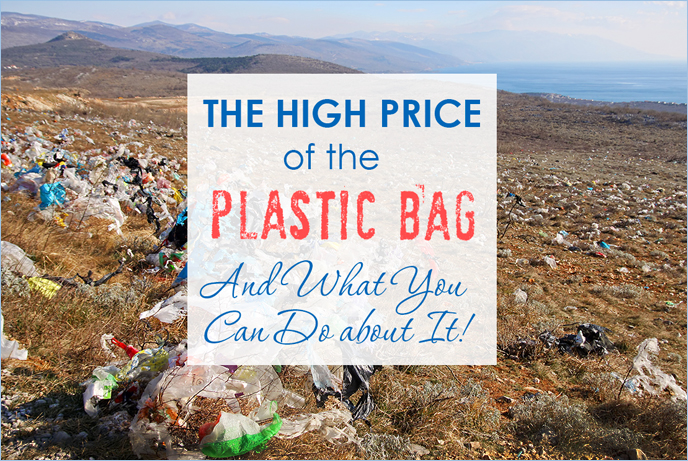 The High Price of the Plastic Bag—And What You Can Do about It!