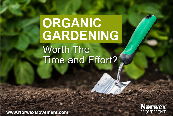 Is Organic Gardening Worth the Time and Effort?