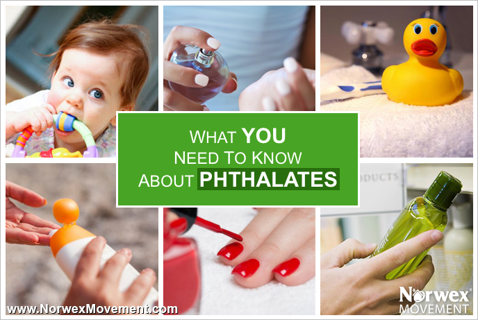 phthalates_1