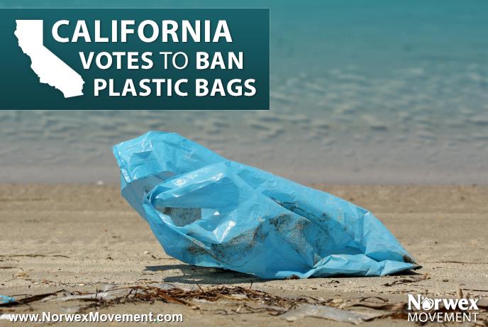 California Votes to Ban Plastic Bags!