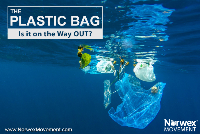 The Plastic Bag: Is it on the Way OUT?