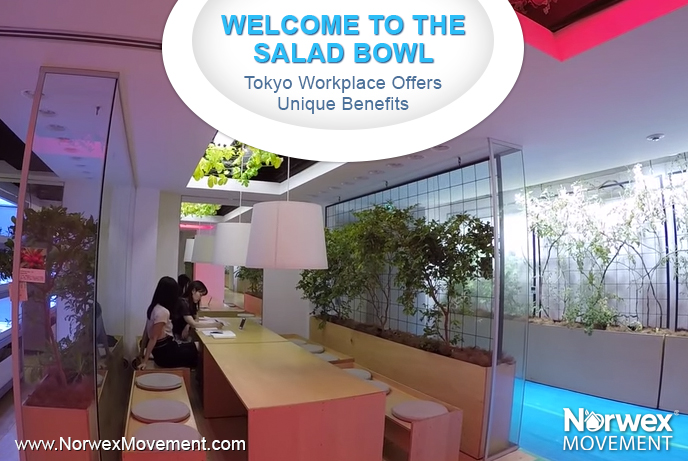 Welcome to the Salad Bowl: Tokyo Workplace Offers Unique Benefits