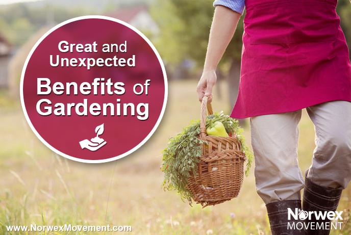 blog_post_gardening