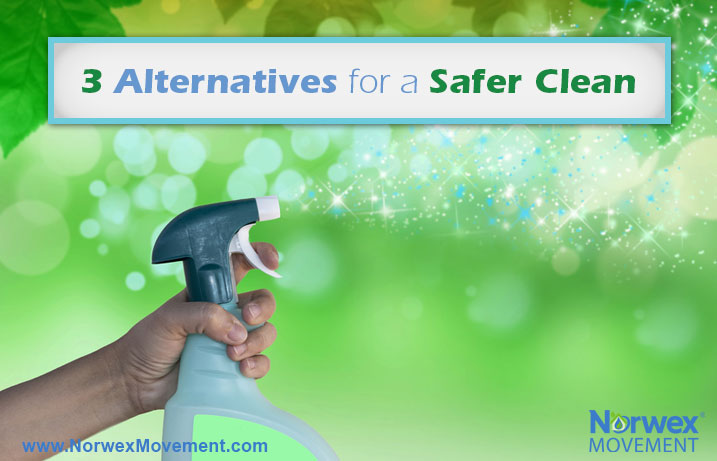 3 Alternatives for a Safer Clean