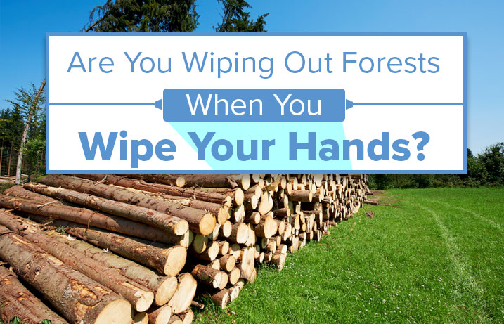 Are You Wiping Out Forests When You Wipe Your Hands?