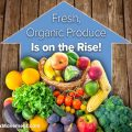 Fresh, Organic Produce Is on the Rise!