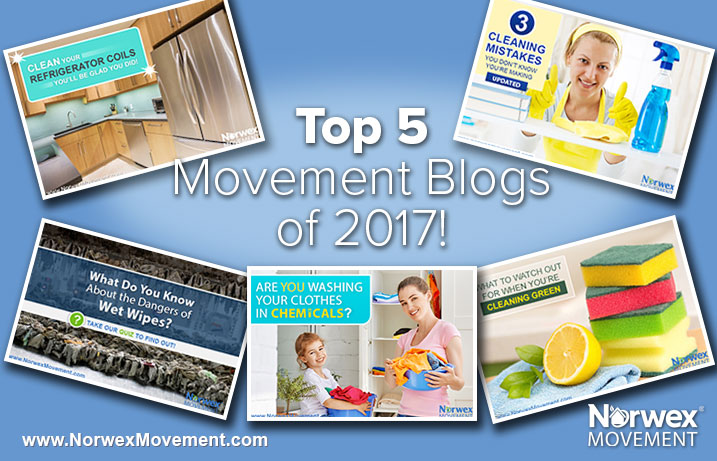 Top 5 Movement Blogs of 2017!