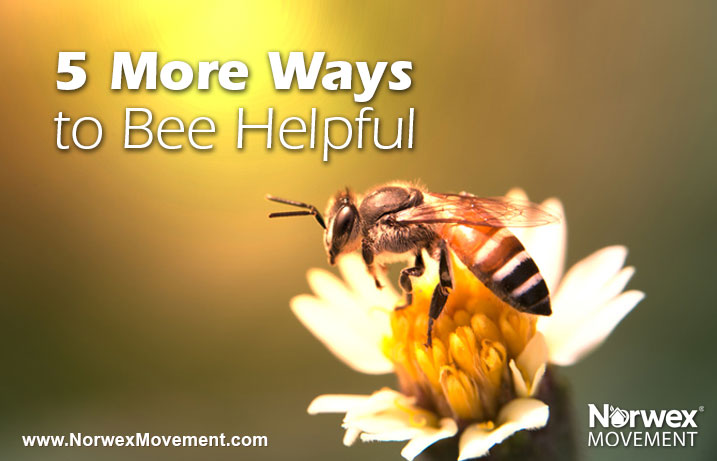 5 More Ways to Bee Helpful
