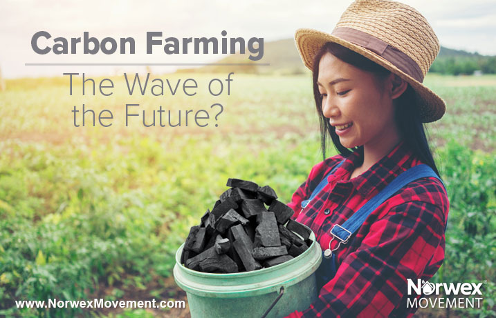 Carbon Farming—The Wave of the Future?
