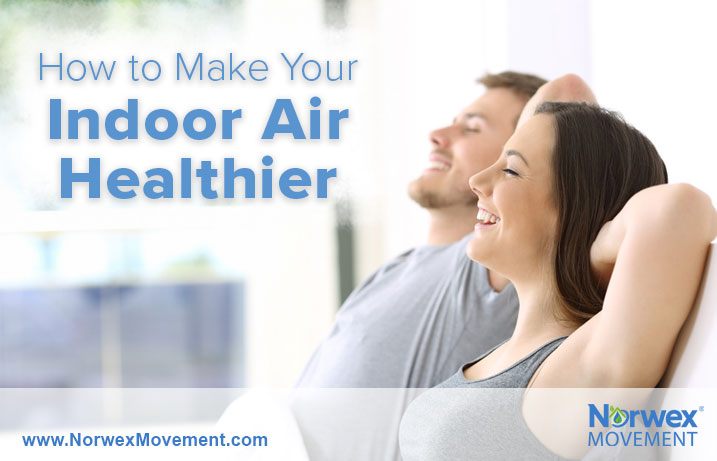 How to Make Your Indoor Air Healthier