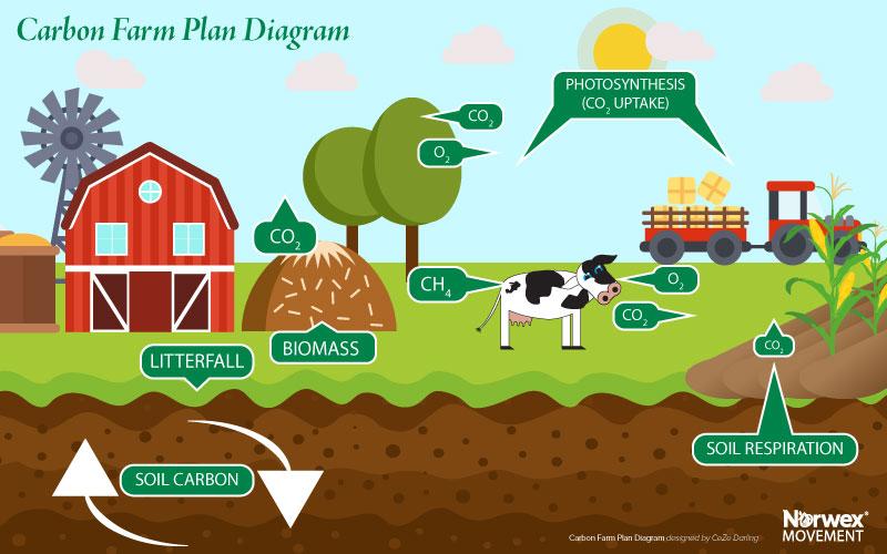 Carbon Farming Plan by CeZe Darling