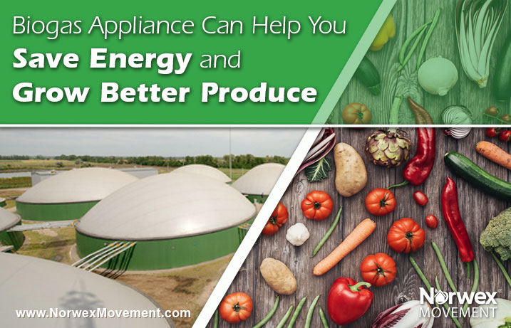 Biogas Appliance Can Help You Save Energy and Grow Better Produce
