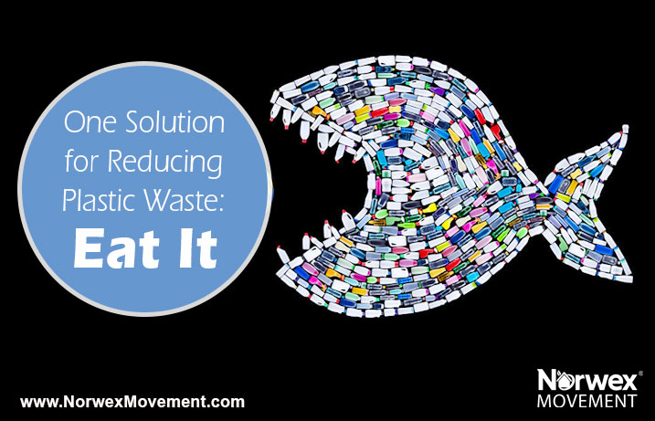 One Solution for Reducing Plastic Waste: Eat It