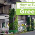 How to Turn the Concrete Jungle Green