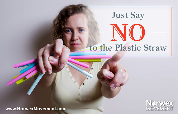 Just Say No to the Plastic Straw