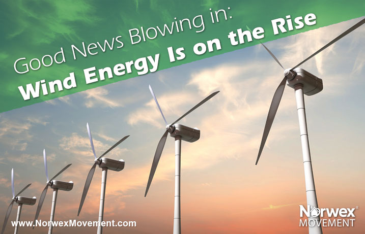 Good News Blowing in: Wind Energy Is on the Rise