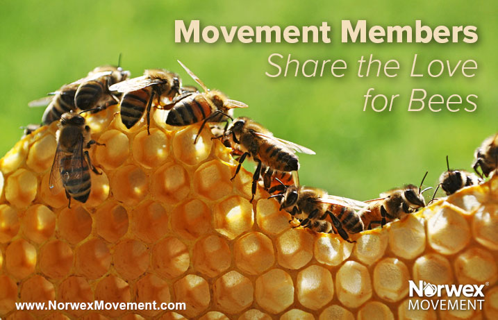 Movement Members Share the Love for Bees