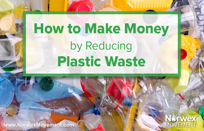 How to Make Money by Reducing Plastic Waste