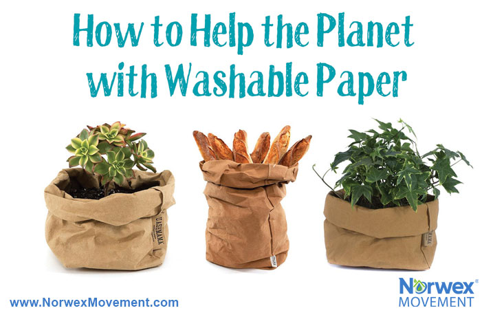 How to Help the Planet with Washable Paper