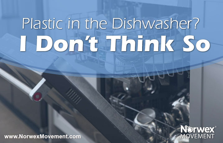 Plastic in the Dishwasher? I Don't Think So