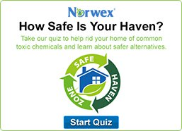 Safe Haven Quiz